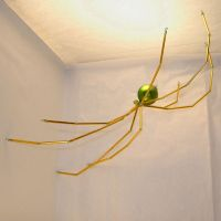 Gold and Green Bead Spider by Maatkare