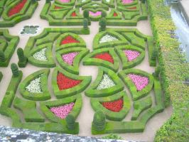 Castle of Villandry: Part of the Garden Part. I by FreakyPhoto