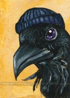 Tuque Raven - ACEO by sobeyondthis