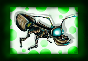 Bug by Keith0186