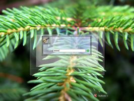 Pine Logon by krosavcheg