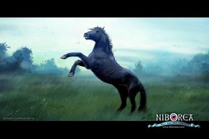 NIBOREA: The Stallion by Prasa
