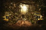 JWT Brazil - Forest by lost-exile