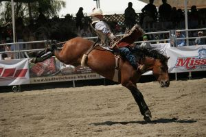 rodeo 8 by xbr0kendevotion