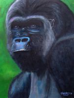 gorilla by Heidyly