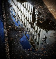 a day in the life of a puddle by awjay