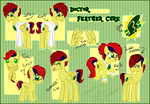 Commission: Feather Cure Reference sheet by CommanderMitsuki