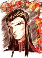 ELrond in Anime-style by aera