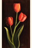 3 tulips by dh6art