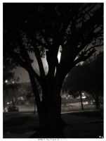 The Tree by mentallydeceased