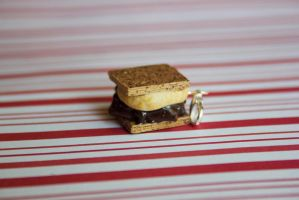 polymer clay smores by l337Jacqui