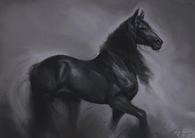 Friesian by Smirtouille