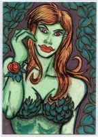 Poison Ivy Sketchcard by The-Standard