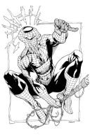 Spiderman SuperShow2011 by RobertAtkins
