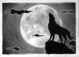 Howling Wolf by augustobf