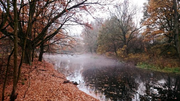 Autumn in the Park by kraah4