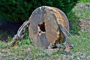 old mill stone by artbylink