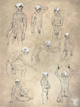 DA2 - Fenris Naked Sketches by Aaorin