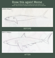 Meme before and after shark by LauraRamirez