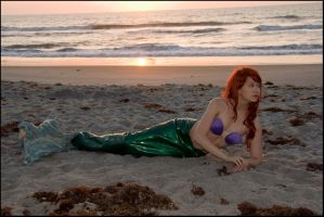Mermaid Washed Ashore 2 by Project-27