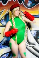 Micro Kitty Cammy 9 by CanteraImage