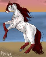 Spotted Mare by Misaki-Fain