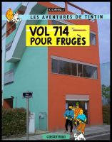 Vol 714 pour Fruges by piooley