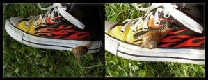 The Snail and the Shoe, Part 2 by Vampiric-Pirate