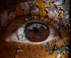 Cracked Eye by annemaria48