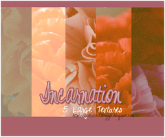 TEXTURE PACK 3 - Incarnation by chazzief