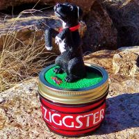 Personalized Dog Pet Jar by CreativeCritters