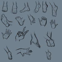 Anatomy Practice Hands And Feet by Jau-chan