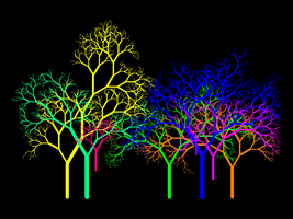 Leafless Colour Wheel Grove I by copperphoenix