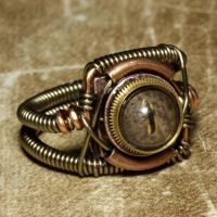 Steampunk Ring Brass eye by CatherinetteRings