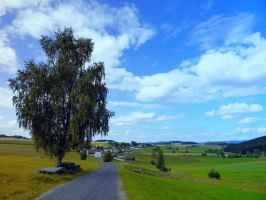 Old tree, country road and a cloudy sky by patrickjobst