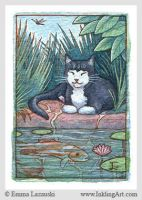 ACEO: Cat by a Garden Pond by emla