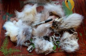 Wolf Fur Scraps for Sale! by lupagreenwolf