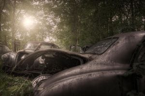 :Left to rot: by neonnine1974