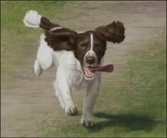 Running Dog by bugsandbears