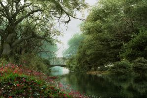 Woodland Waterway by DIGITAL-DOM