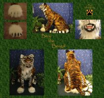 Benji the Bengal Tiger by WhittyKitty
