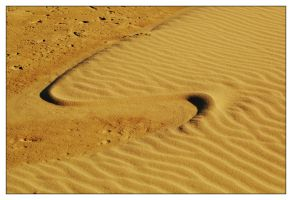 Wind wave on sand by wildplaces
