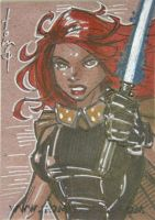 Mara Jade by Tom Hodges by shelbysnake