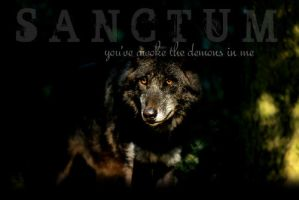 Sanctum by Roams