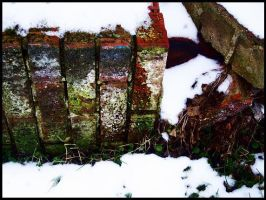 Moss Covered Bricks by BeckyMarie73