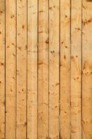 Wood Texture - 31 by AGF81