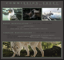 COMMISSION SHEET -- Open by dancing-crows