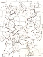 Teenage Mutant Ninja Turtles 2012 by guinnessyde