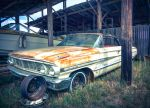 Rusty old Ford Galaxie 500 by jaredsturgill
