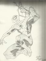 Spider-Man Profile Swing by Obi-Waton